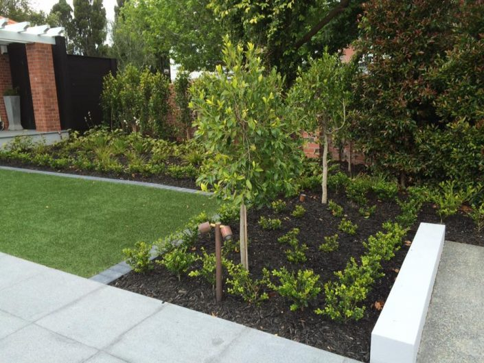 Herne Bay garden maintenance