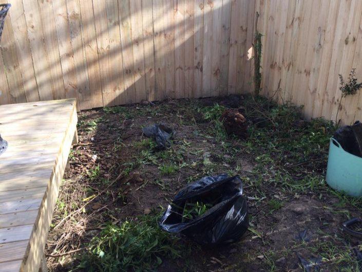 garden makeover auckland